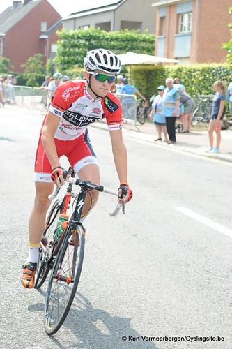 Geel Oosterlo  (15)