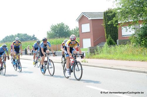 Geel Oosterlo  (49)