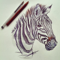 The World's Best Photos of ink and zebra - Flickr Hive Mind