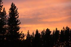 DSC09107 (sylviagreve) Tags: unitedstates oldfaithful yellowstonenationalpark yellowstone wyoming 2013
