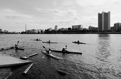 (Poteryaev Sergey) Tags: street autumn bw lake art water monochrome sport project landscape photography boat photo blackwhite kayak foto photographer russia streetphotography photojournalism documentary daily canoe watersports ekaterinburg bwphotography rusia ural dinamo paddles photoessay  provinces      documentaryphotography    canon400d      sergeypoteryaev