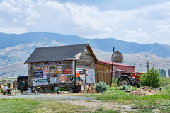 back in time (Pattys-photos) Tags: old signs tractor shed idaho