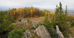 (Kirill & K) Tags: morning autumn trees panorama nature landscape rocks cloudy утро осень панорама природа пейзаж пасмурно bashkiria скалы деревья southural iremel башкирия южныйурал иремель