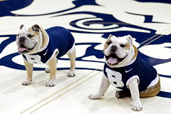 """He taught me everything...including a love of ice cream. Gonna celebrate @ButlerBlue2 today. • <a style=""""font-size:0.8em;"""" href=""""http://www.flickr.com/photos/73758397@N07/15093344215/"""" target=""""_blank"""">View on Flickr</a>"""