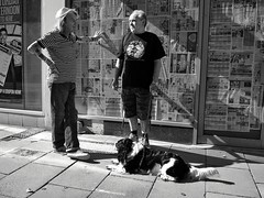 Prospect Street (mycoil) Tags: street urban blackandwhite bw dog lumix hull 14mm olympusepm2