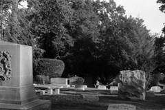 Deer, Rosedale (Nesster) Tags: cemetery graphic nj 150 sw 23 100 f56 montclair rodinal fujinon graflex rosedale 135mm pacemaker fomapan