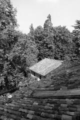 Il Talucco, roofline (DKAIOG) Tags: italy piemonte biella valdengo mainetomontepulciano