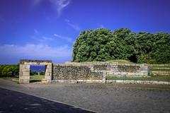 Parque da Cidade Porto 3 (ClaudioSilva1981) Tags: portugal nature landscape rebel kitlens porto 1855mm t3 parquedacidade cann 1100d