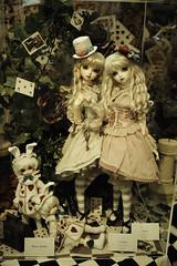 ANTIQUE (yukihira_fl) Tags: doll jenny super kawaii blythe   dollfie liccachan
