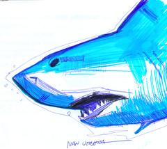 tiburón a lapicero (ivanutrera) Tags: shark tiburon draw dibujo drawing dibujoalapicero boligrafo animal sea mar dibujoaboligrafo