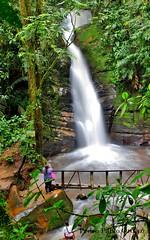 cascada Santa Rita -La Boquia -Quindio (Pedro Pablo Orozco) Tags: colombia quindio salento cascada waterfall saltodeagua