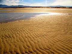 Low tide (thomasgorman1) Tags: sand beach tide baja mexico