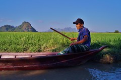 Hpa-An - grotte Sadan 11 (luco*) Tags: homme pirogue bateau boat river myanmar birmanie burma hpaan sadan cave grotte rice field rizière man rocher karstique karst flickraward flickraward5