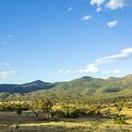 Tinderry Nature Reserve thumbnail