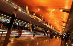 Doha Airport 18 (David OMalley) Tags: qatar doha airport hamad international