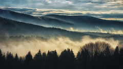 Good Morning Bavaria! (Stefan (back from Scotland, but need some time)) Tags: sunset sunrise morning mist foggy sunlight sun silhouettes smoke damp clouds sky forest forestscape landscape panorama bavaria bavarianforest bayerischerwald mauth deutschland germany sony sonya7 sonya7ii sonyalpha7 canonef7020028lisiiusm morningmood mood atmosphere