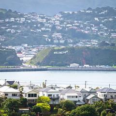 Wellington Sign (goodbyetrouble) Tags: wellington nz new zealand neuseeland aotearoa sign schild windy city windig evans bay seetheworld