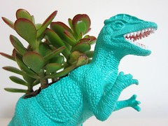 Planter-toy dinosaur_Pinterest (DougBittinger) Tags: