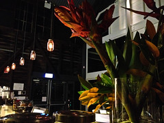 Sydney Theatre Company Interiors (zoelofven) Tags: sydneytheatrecompany