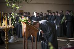 9 июня 2014, День Святого Духа / 9 June 2014, Day of the Holy Spirit (spbda) Tags: church prayer christian orthodox bishop liturgy spbda spbpda