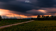 The storm is coming! (Callegher Marco - The beauty in my eyes) Tags: ca sunset storm color clouds lights tramonto country 85mm mybest luce temporale canon6d cottoni mybestlandscape