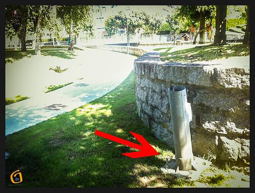 Perigo no parque da Coelleira