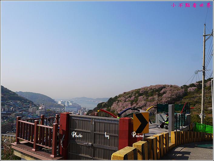 釜山甘川洞 (58).JPG