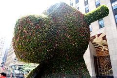 Jeff Koons' Split-Rocker (The Flying Inn) Tags: nyc sculpture horse ny newyork art statue manhattan sony wisdom rockefeller sculptures rockinghorse 28100mm splitrocker f1849 rockefellercenter30rock