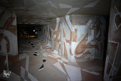 Lasco Project - Palais de Tokyo (s.butterfly) Tags: paris project palaisdetokyo lasco