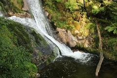 Looking Downwards (gripspix) Tags: germany deutschland waterfall wasserfall schwarzwald blackforest allerheiligen badenwrttemberg oppenau allerheiligenwasserflle 20140622