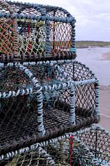 IMG_7437 (steven.kemp) Tags: beach norfolk wells hut wellsnextsea