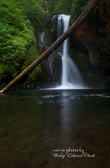 BCF 12_edited-1 (Photos by Wesley Edward Clark) Tags: oregon silverton waterfalls scottsmills buttecreekfalls