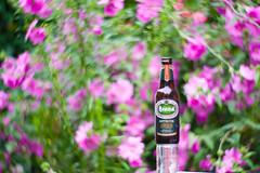 Dealing with the heat (Peter Branger) Tags: flower beer brand canoneos5d bestofweek1 bestofweek2 bestofweek3 petzval newpetzval