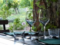 un angolino romantico (fotomie2009) Tags: france glass restaurant vineyard wine refraction francia roussillon ristorante vigne vino bicchiere domaine vigneti rifrazione nidolere