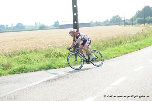 Geel Oosterlo  (168)