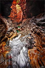 tenacity.... (scott morgan images) Tags: water nationalpark moss stream au australia canyon wa westernaustralia rockpool karijini pilbara hancockgorge