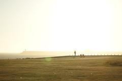 (n_sapiens) Tags: ocean city sunset sea sun lighthouse color water de faro warm europa europe tramonto mare atlantic porto sole gaia colori oporto vilanova oceano portogallo matosinhos atlantico caldo