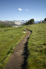 The path ahead (ignis:) Tags: california leica usa mountain nature hiking yosemite yosemitenationalpark californie tatsunis gaylorlakes leicam8