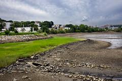 Tidal Flats, East Boston (PAJ880) Tags: bridge wild st boston ma east flats condor tidal mystic