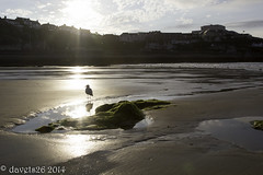 Sunset on Towan Beach Newquay (davets26) Tags: sunset cornwall newquay towanbeach ef24105f4l gullcanon eos550d