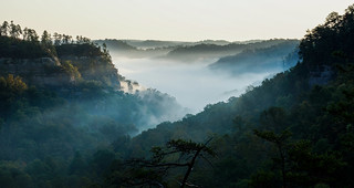 Morning Fog in the Red River Gorge