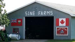 Sine Farms (Will S.) Tags: ontario canada building farm flag flags mypics canadaflag quintewest ontarioflag sinefarms