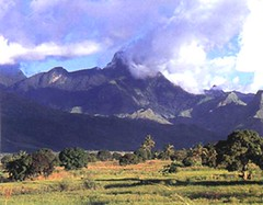 "arusha mt meru • <a style=""font-size:0.8em;"" href=""http://www.flickr.com/photos/62781643@N08/14848072674/"" target=""_blank"">View on Flickr</a>"