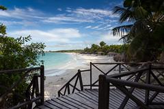 Tropical Island (mx2.de) Tags: ocean beach water palms turquoise cuba cayosantamaria