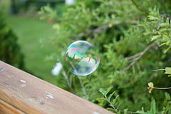 Little World (giantmike) Tags: summer floating refraction bubble canonef24105mmf4lis