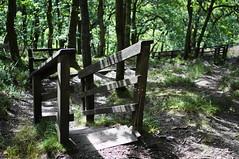 Twistin' an' Turnin' (Neillwphoto) Tags: stairs wooden walk steps rail glen circular comrie lednock