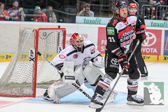 """DEL15 Kölner Haie vs. Thomas Sabo Ice Tigers 19.09.2014 013.jpg • <a style=""""font-size:0.8em;"""" href=""""http://www.flickr.com/photos/64442770@N03/15105146219/"""" target=""""_blank"""">View on Flickr</a>"""