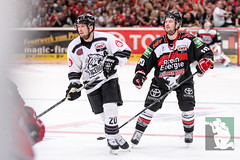 """DEL15 Kölner Haie vs. Thomas Sabo Ice Tigers 19.09.2014 057.jpg • <a style=""""font-size:0.8em;"""" href=""""http://www.flickr.com/photos/64442770@N03/15105433107/"""" target=""""_blank"""">View on Flickr</a>"""