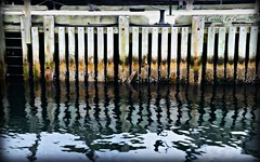 CLJ_0732 water reflection.c (caroles_corner) Tags: canada reflection water pier dock nikon assignment ripples halifax effect orton tsc d7000 tamron18270