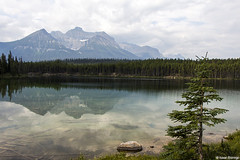 Reflection in the Rockies (isaac.borrego) Tags: trees lake canada mountains reflection water clouds forest pond alberta rockymountains peaks banffnationalpark canonrebelt4i